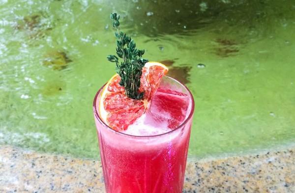 Cocktail-Wild-Italicus
